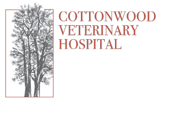 Cottonwood Veterinary Hospital